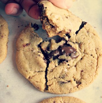 A hand pulling a chunk off a chocolate chip cookie.