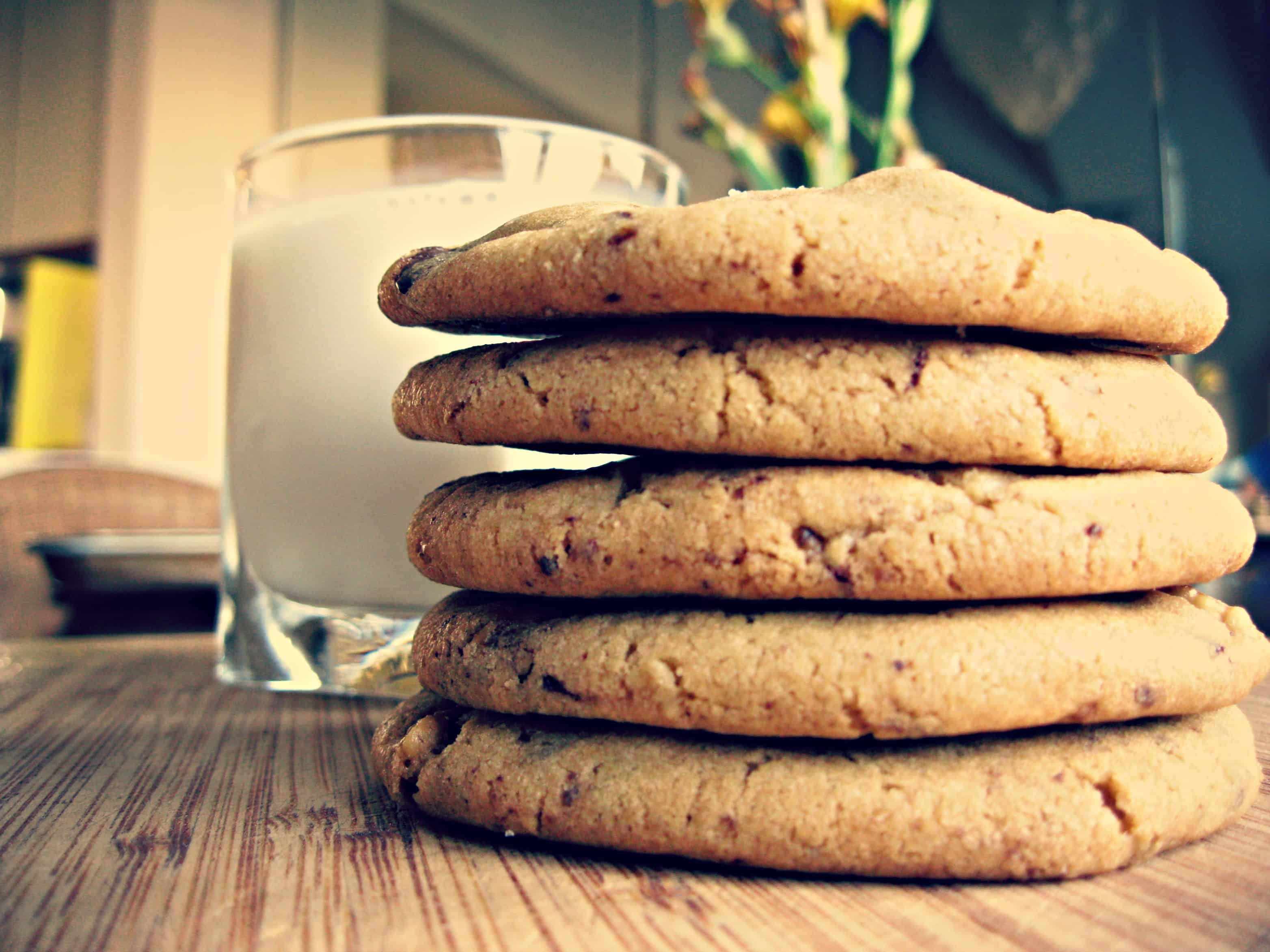 A stack of chocolate chip cookies next to a glass of milk.