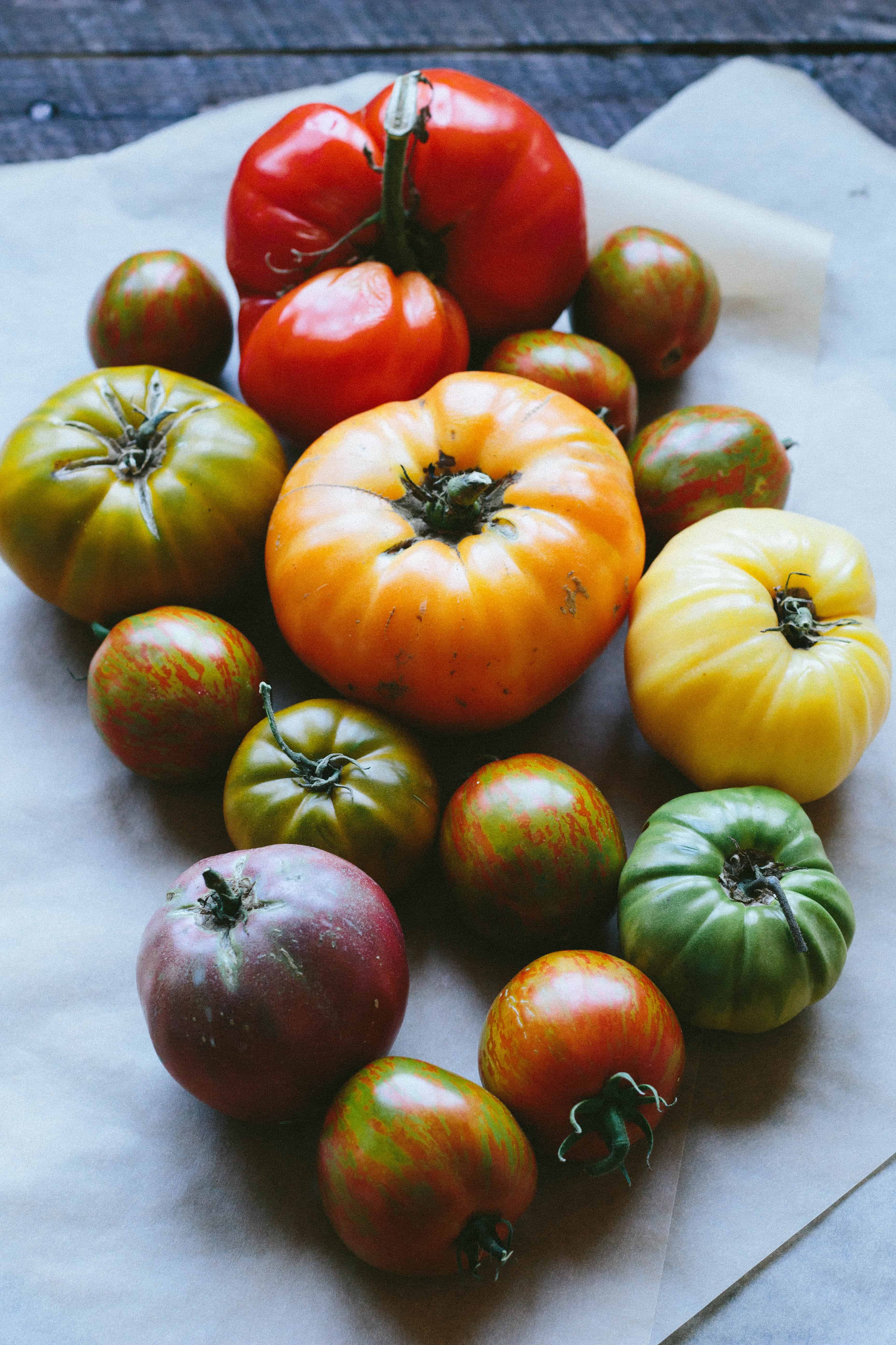 ALL ABOUT TOMATOES | How to select, store and use up all the gorgeous summer tomatoes this season. #easy #heirloom #tomatoes #garden #tomato #gardening #DIY | ColeyCooks.com
