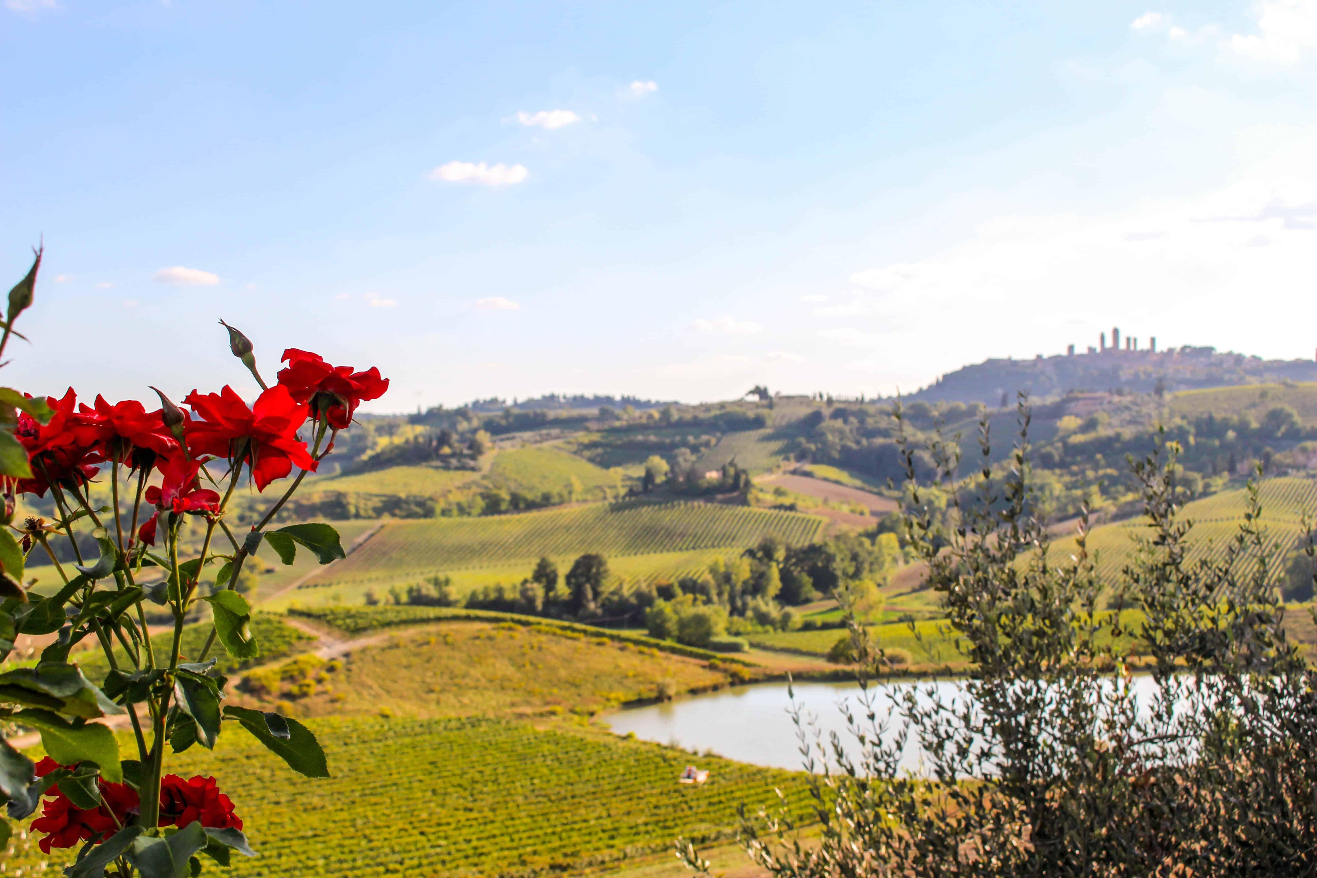 Fattoria Poggio Alloro, San Gimignano, Tuscany, Italy
