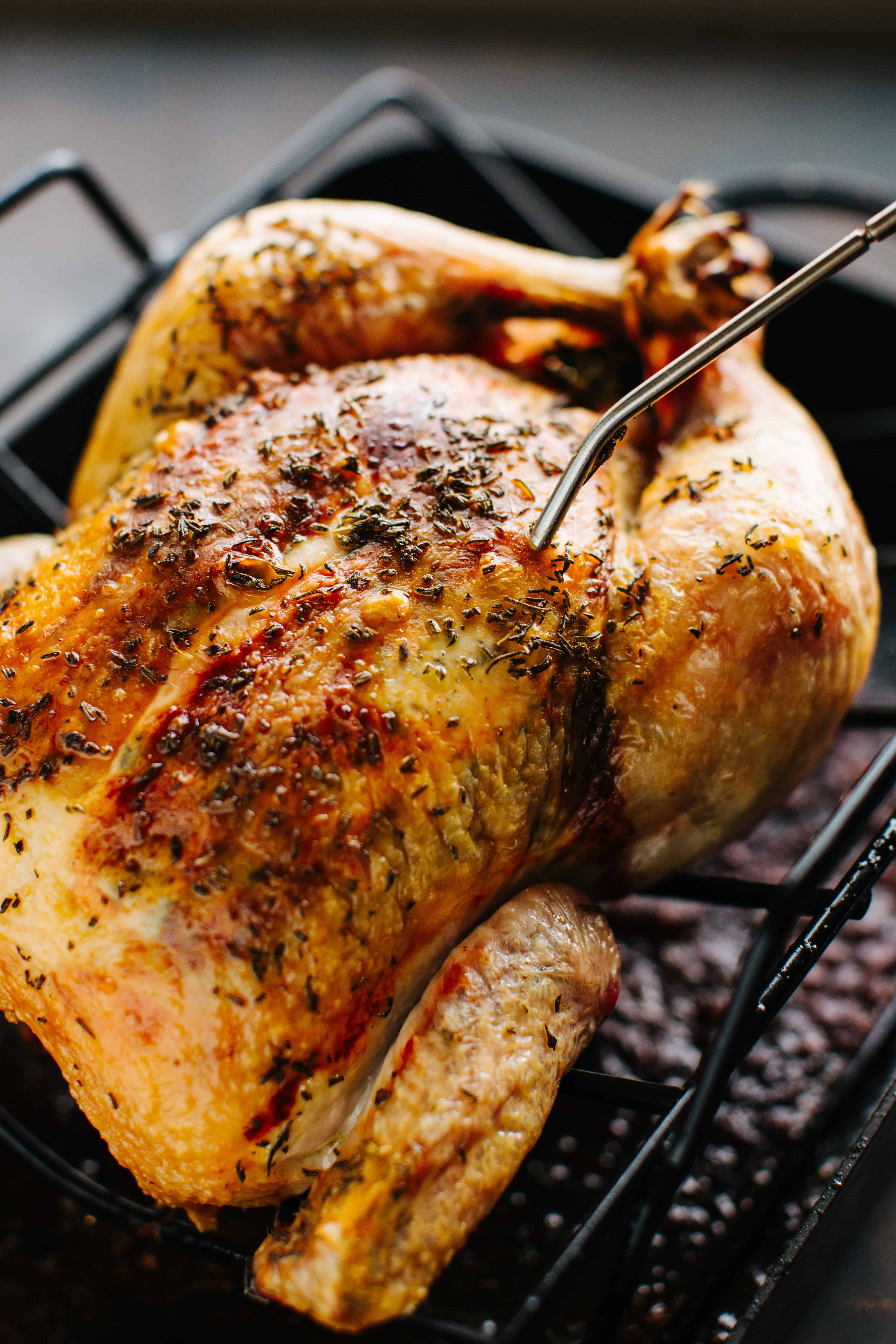 close up of browned whole roasted chicken in roasting pan with thermometer stuck inside