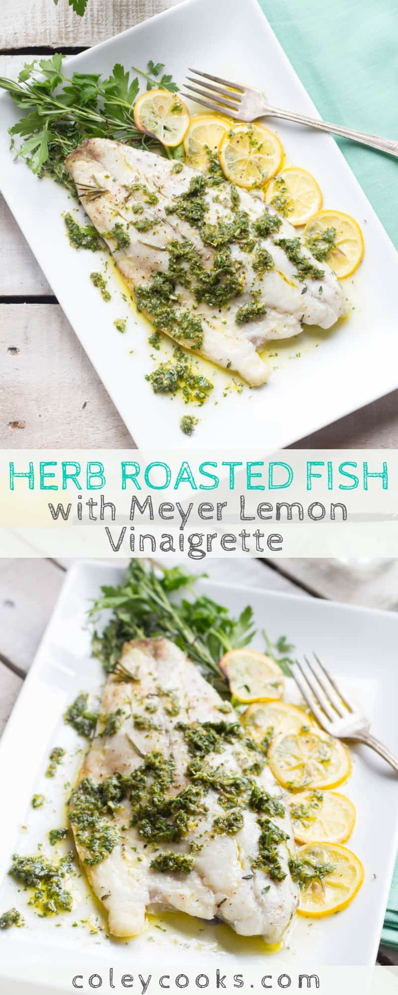 This easy recipe for Herb Roasted Fish with Meyer Lemon Vinaigrette is an easy, healthy recipe that can be made in 20 minutes! Adaptable to many different types of fish. #easy #fish #seafood #recipe #barramundi #meyerlemon #roasted   ColeyCooks.com