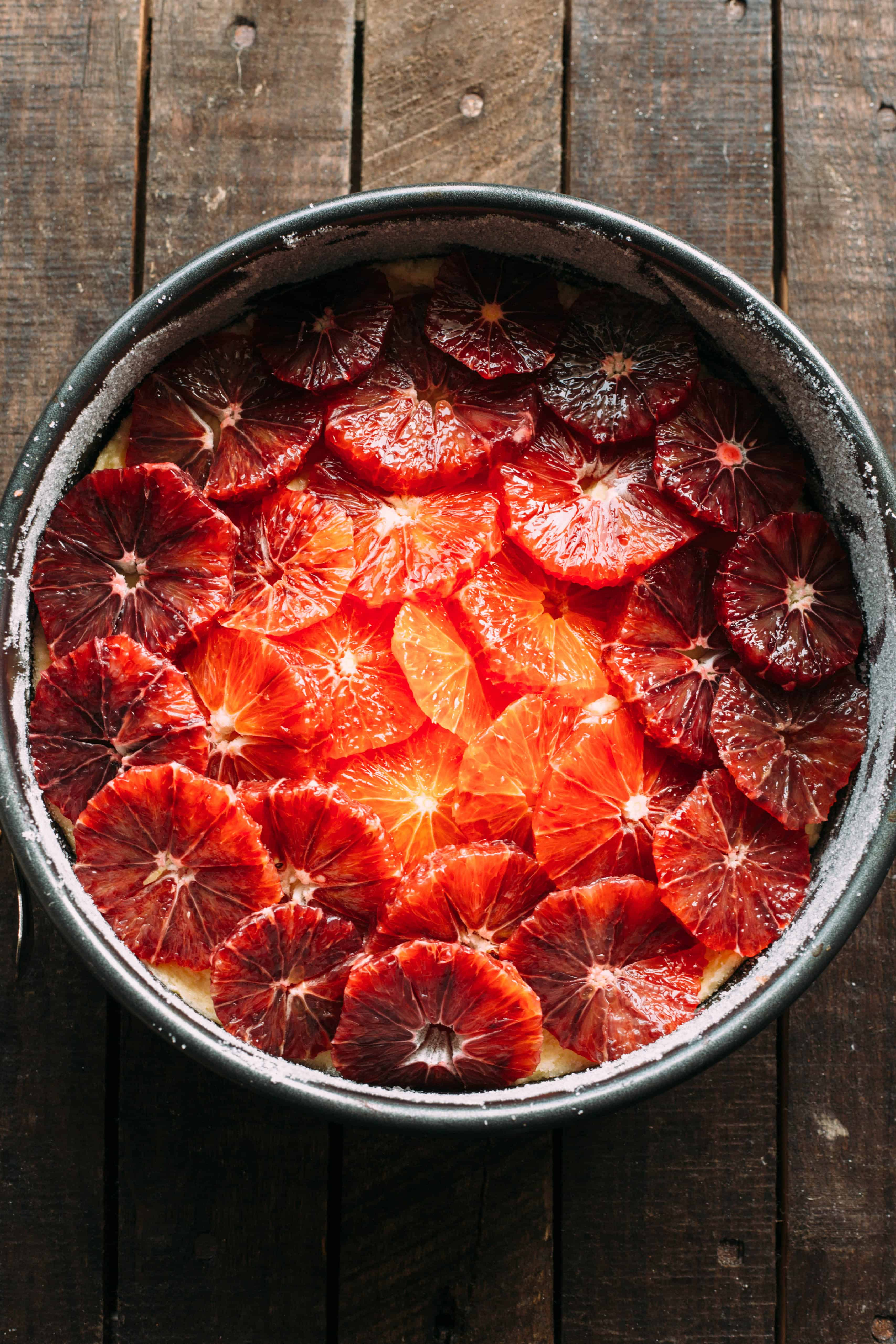 Blood orange slices layered over almond cake batter in a springform pan.