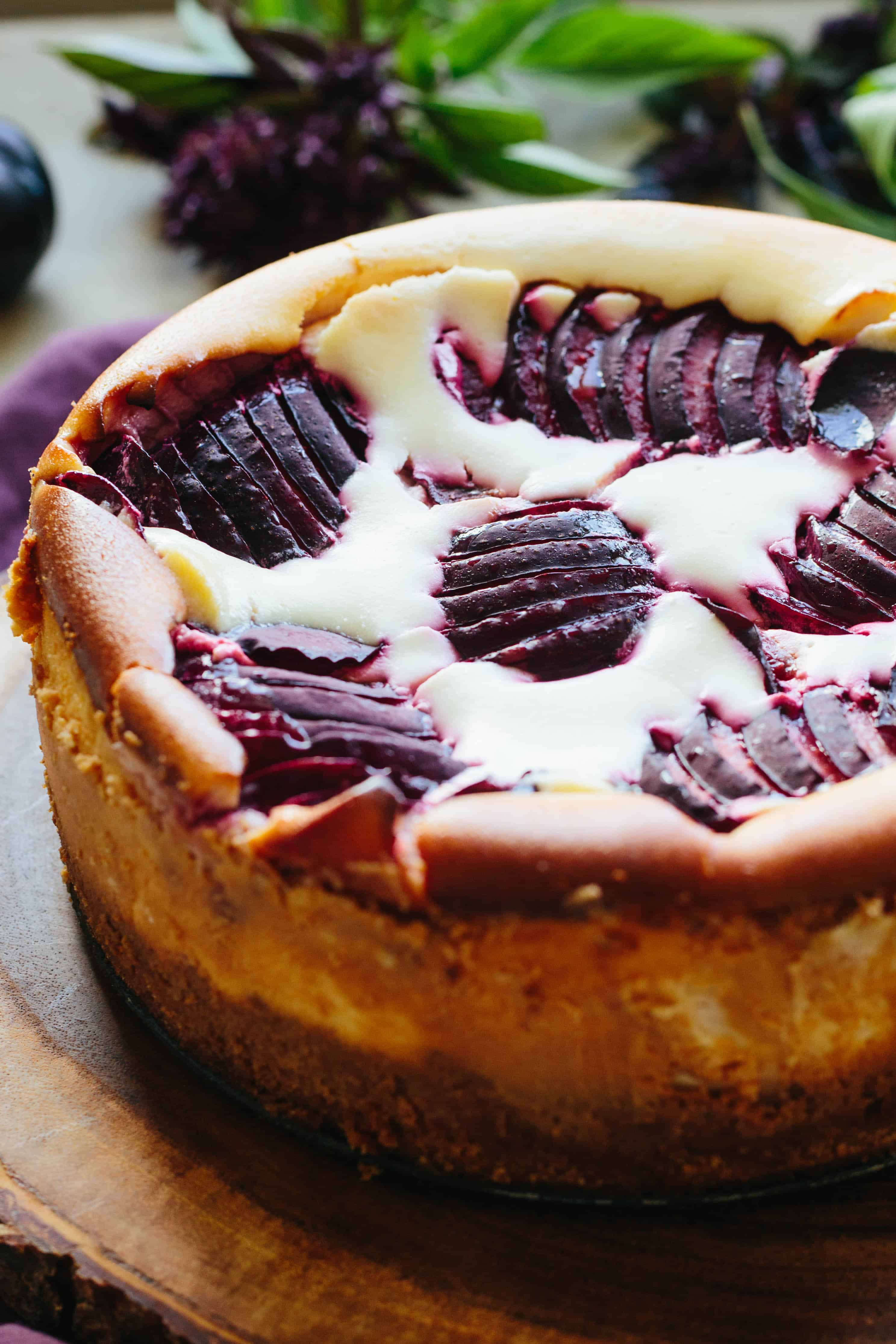 Close up top view of sliced plums baked into a ricotta cheesecake.