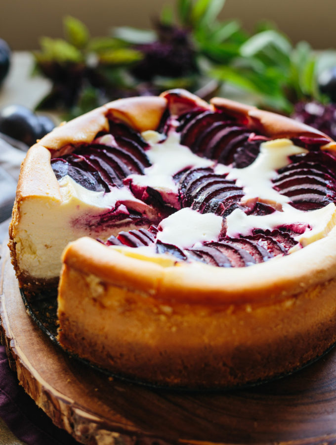 Ricotta Cheesecake with Plums | Coley Cooks