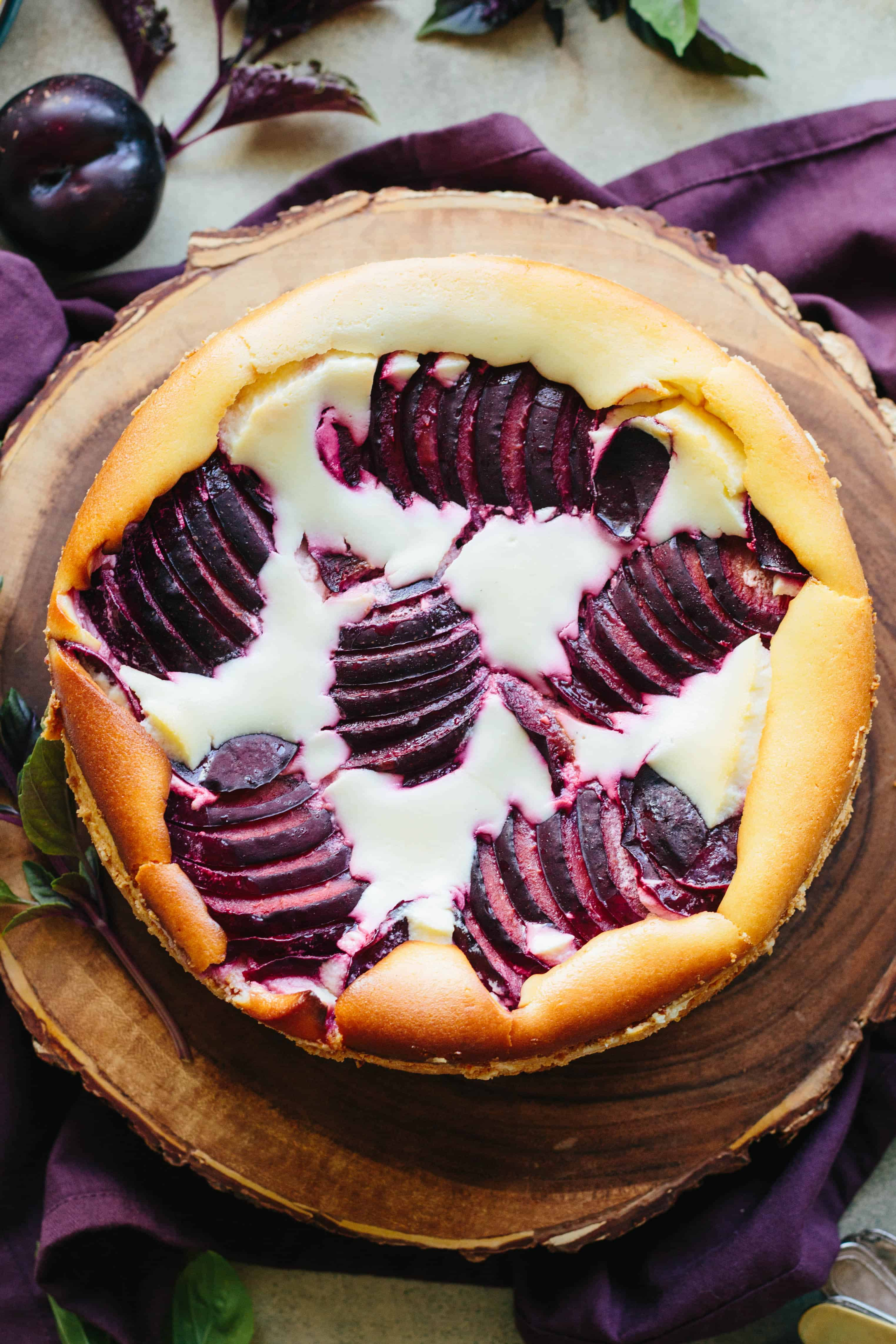 Top view of sliced plums baked into the top of a ricotta cheesecake.