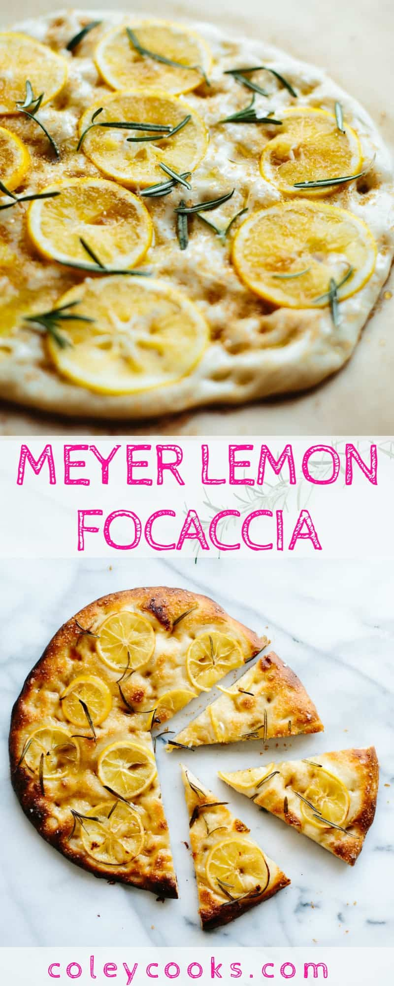 MEYER LEMON FOCACCIA | Salty, Sweet, Tangy, Pillowy Soft + Totally Addictive Focaccia Recipe! The best Italian focaccia bread recipe ever! #Italian #focaccia #bread #recipe #meyerlemon #lemon | ColeyCooks.com