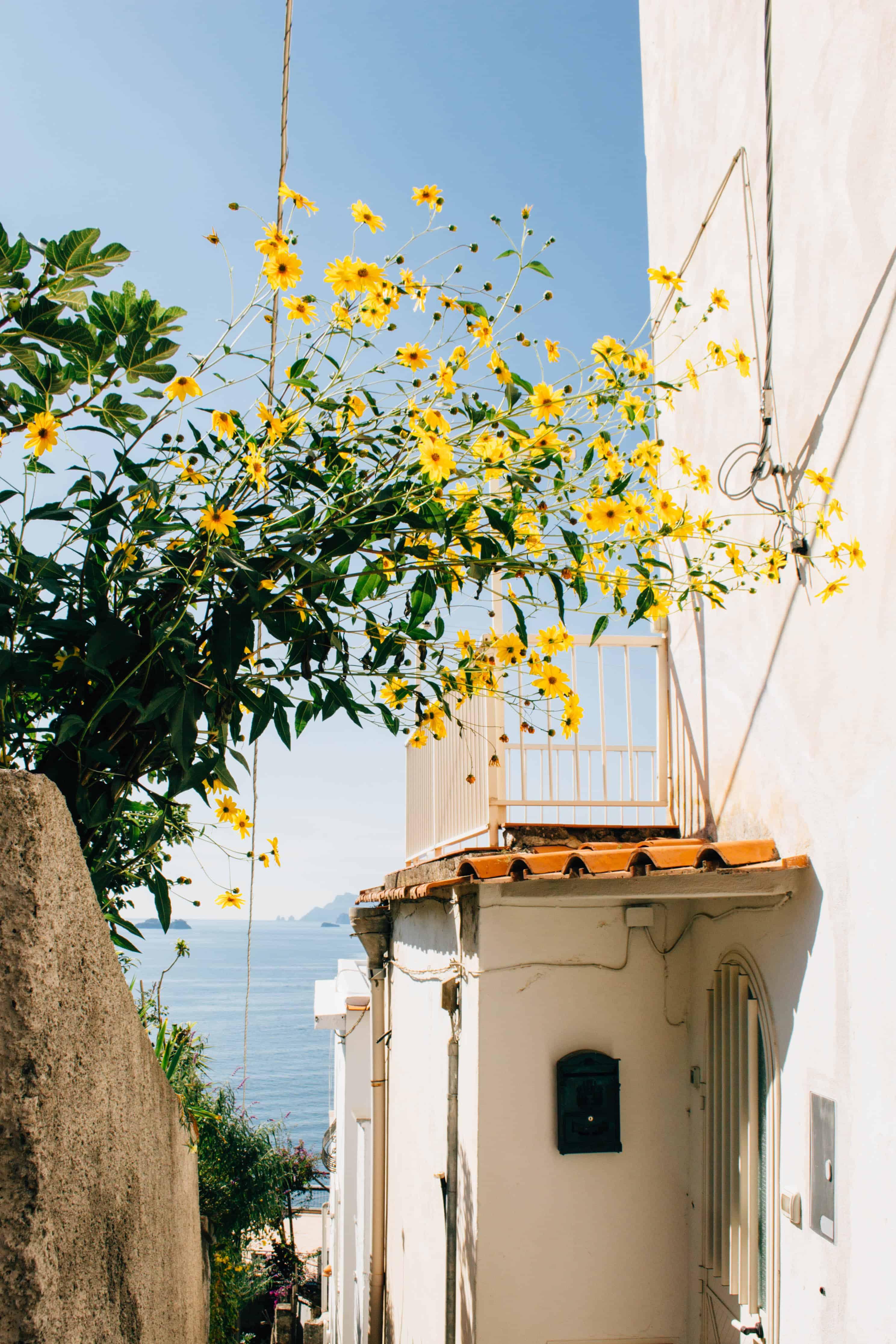 Amalfi Coast Scene - Praiano